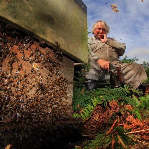 beekeeper-at-work158copy